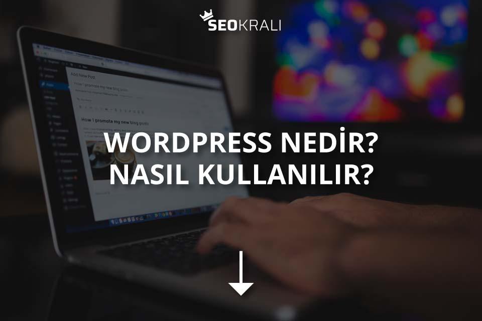 WordPress Nedir? Nasıl Kullanılır?